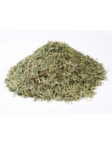 Тибетская лекарственная трава - Леспедеца копеечниковая.