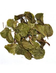 Грушанка круглолистная (трава)